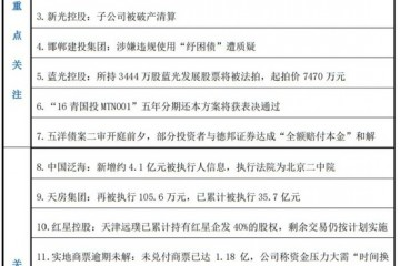 预警内参阳光100的2亿美元可转债或构成违约中国恒大正与潜在投资者探讨出售部分资产